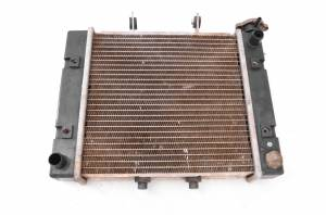Can-Am - 05 Can-Am Rally 200 175 2x4 Radiator - Image 1